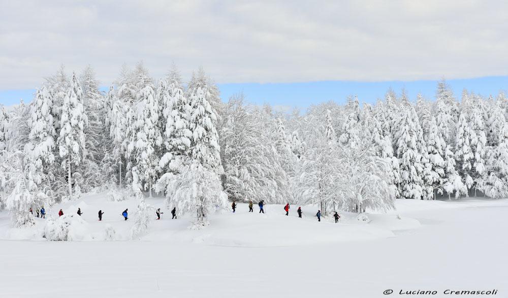 https://www.lucianocremascoli.com/fotosito/wp-content/uploads/2018/02/LUX1151.jpg